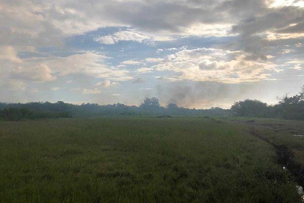 Un incendie en cours à l'Etang Saint-Paul, les pompiers mobilisés