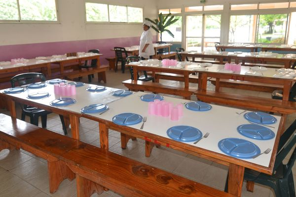 Des vers dans les repas des enfants de Huahine