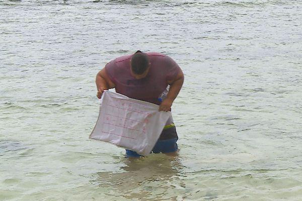 Pollution aux sacs plastiques à Faaone : les habitants révoltés