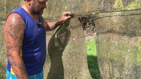 100 kilos de vanille volés dans une serre à Tahaa