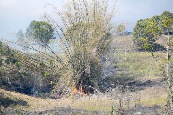 Feu  de Saint-Louis, 4 bambou en famme (27 décembre 2017)