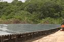 Une usine photovoltaïque innovante: une première mondiale en Guyane