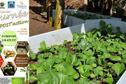 Compost' Action en faveur de la population de Punaauia