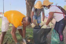 Des Pontois mobilisés pour débarrasser Pointe-à-Pitre de ses déchets