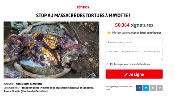 Pétition massacre des tortues
