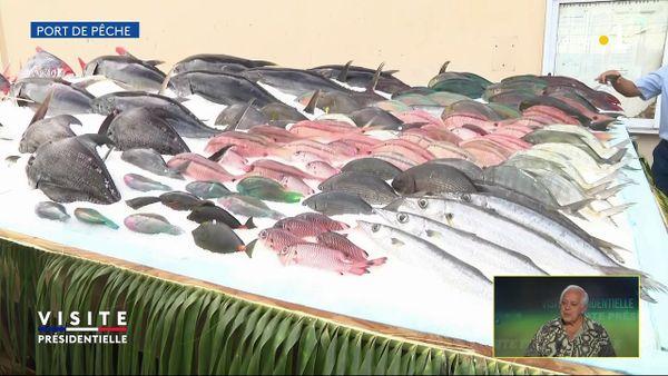 macron découvre la filière pêche