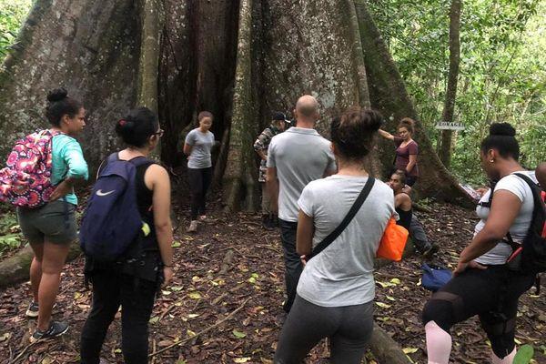 Université : La licence pro Tourisme et Loisirs forme l'élite des managers
