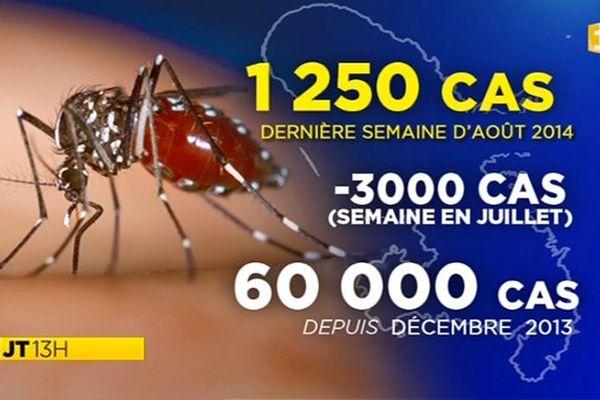 chikungunya et rechute