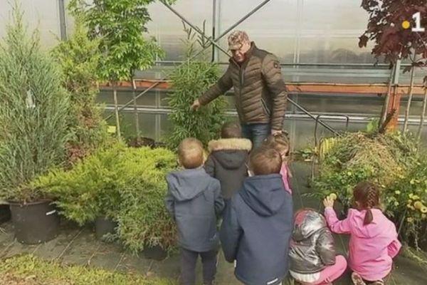 Les serres municipales : un éveil végétal pour les écoliers de Saint-Pierre et Miquelon