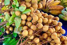 Les premiers longanis arrivent sur les marchés.