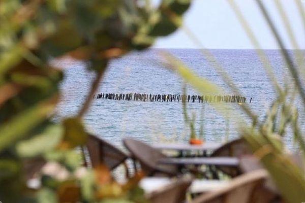 Un nouveau dispositif anti-requin testé à Saint-Paul et l'Etang Salé