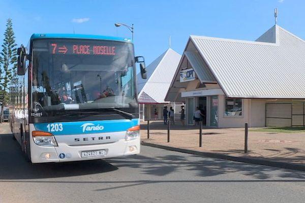 Bus Tanéo, ligne 7