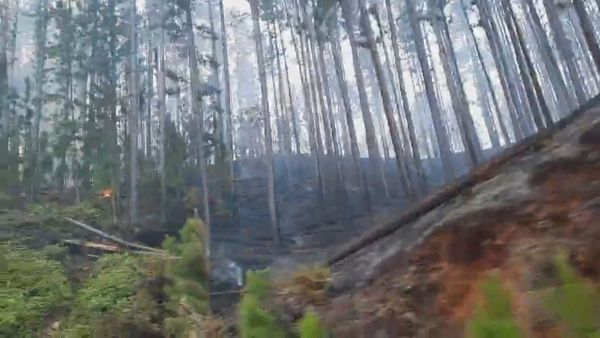Un incendie détruit 400 hectares à Nuku Hiva