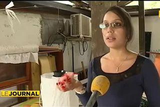 Zika : La lutte s'organise contre les moustiques en Guyane