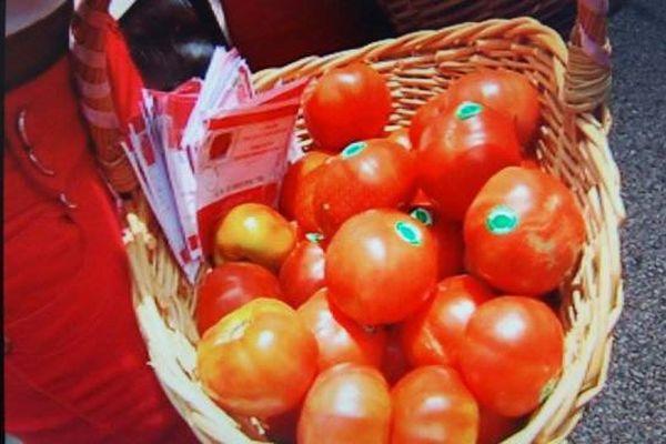 Tomate de montagne 2