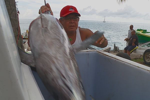 avenir pêcheurs fermeture frontières