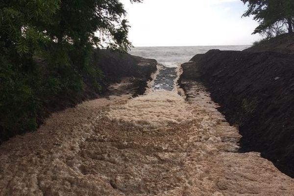 L'écume de mer dans la ravine