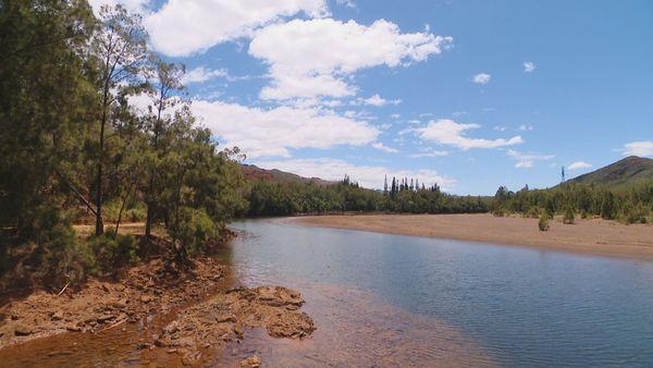 Rivière des Pirogues