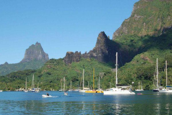 Tahiti Moorea Sailing : le monde de la plaisance en Polynésie