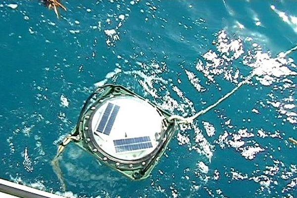 Cap requins : sonar anti-requins