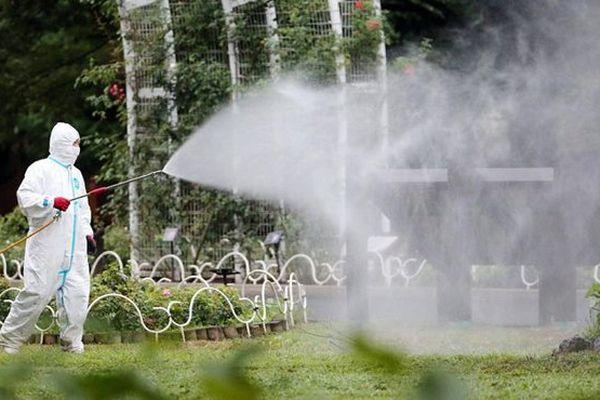 dengue japon