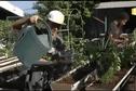 Certains CJA de Tahiti tentent d'expérimenter de nouvelles filières agricoles
