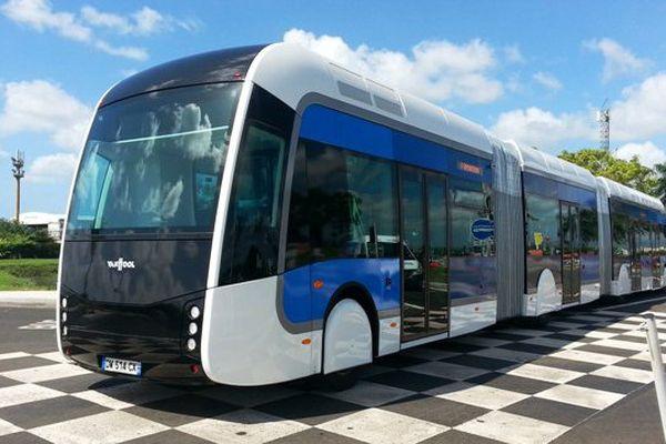 bus TCSP