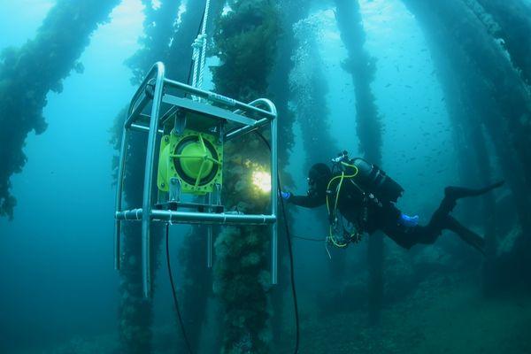 Nouvelle étape dans l'étude sur l'impact du trafic maritime de nos crustacés et de nos mollusques sur l'environnement