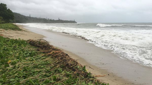 Mer agitée Poindimié (10 avril 2017)