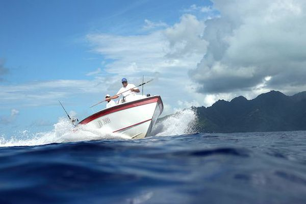 Pêche au mahi mahi