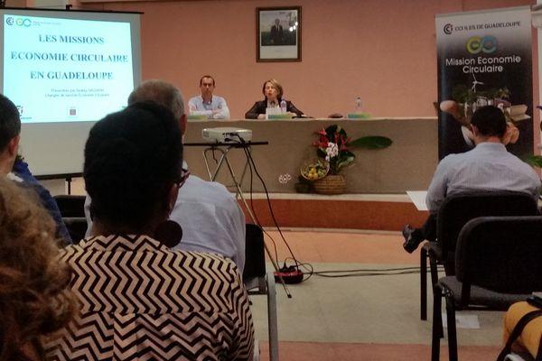L'éconime circulaire de la CCI des îles de Guadeloupe.