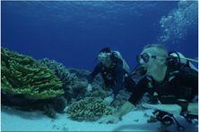 Exploration sous-marine des fonds marins polynésiens