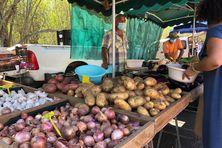 Maraîchers au marché de l'Étang Salé, inquiets de l'arrivée de Danilo