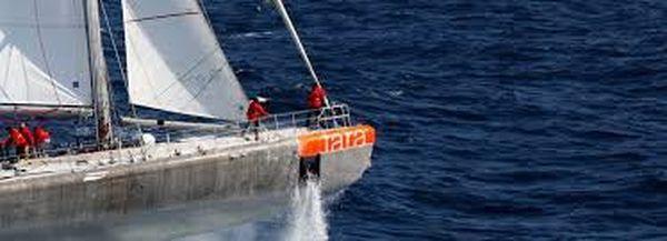 Tara expédition , le bateau