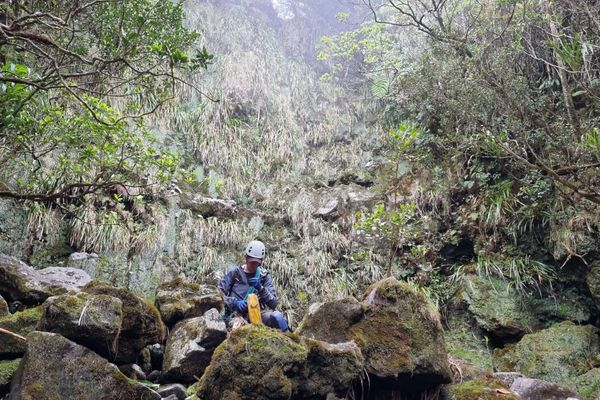 Volontaire pour 3 jours de recherche pour Brigitte Ligney