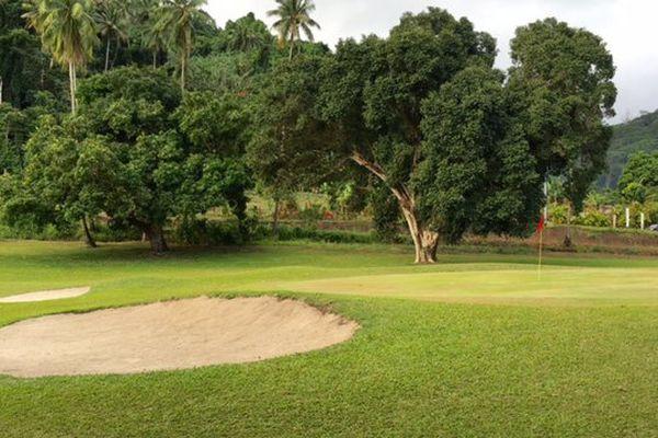 Les parcours d'Atimaono et de Temae attendent les golfeurs vendredi et samedi pour le 30e Téléthon