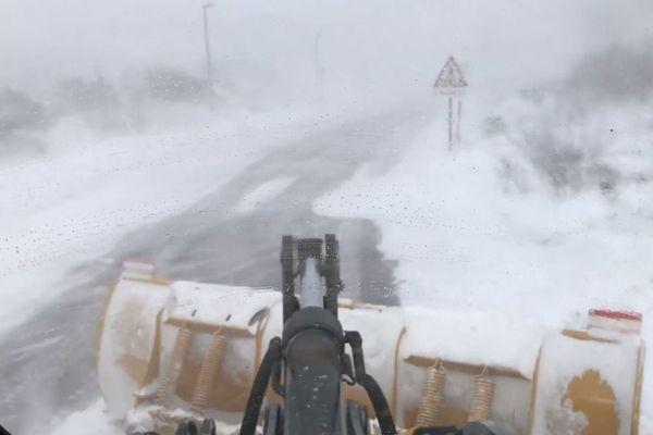 Actualité Météo : blizzard-sur-terre-neuve-et-saint-pierre-et-miquelon