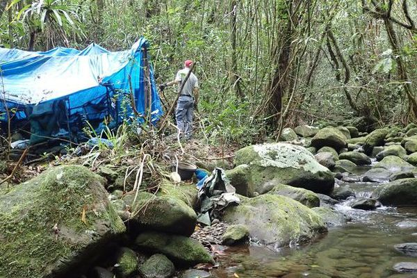 Démantèlement d'un camp de braconnier dans l'Est de l'île.