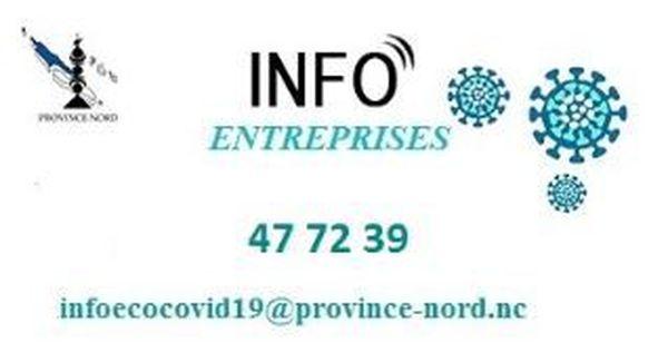 Province Nord : guichet unique Entreprise Covid 19