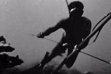 1965, Moorea accueille les championnats du monde de chasse sous marine