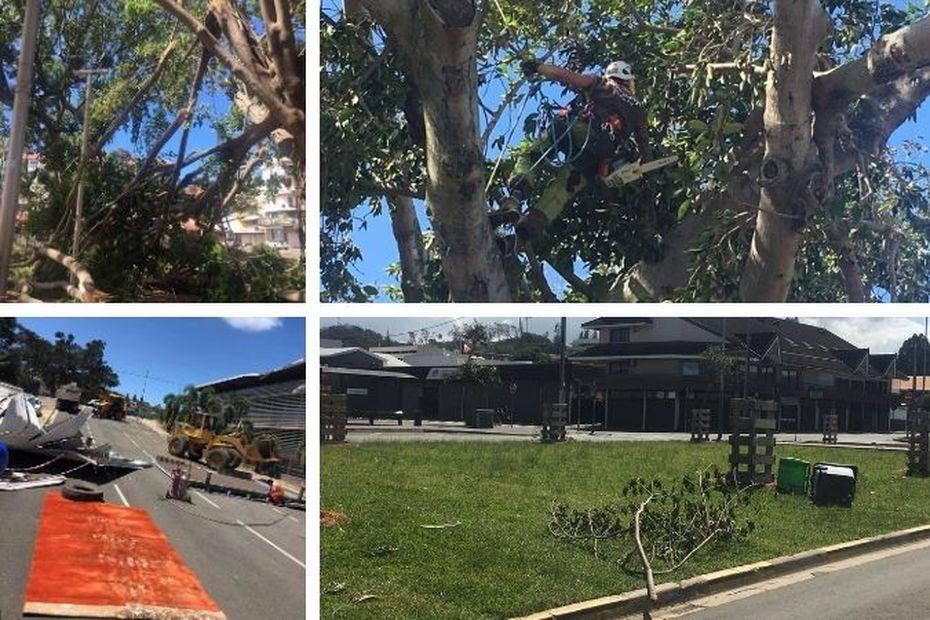 Cyclone Niran : le nettoyage a commencé à Nouméa - Nouvelle-Calédonie la 1ère