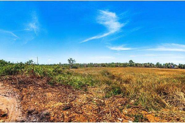 Terres sèches de Guyane
