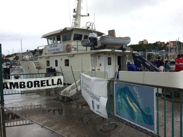 Visite de l'Amborella, mai 2018