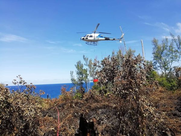 Sainte-Rose : des hectares de végétation ravagés par un incendie au Grand Brûlé