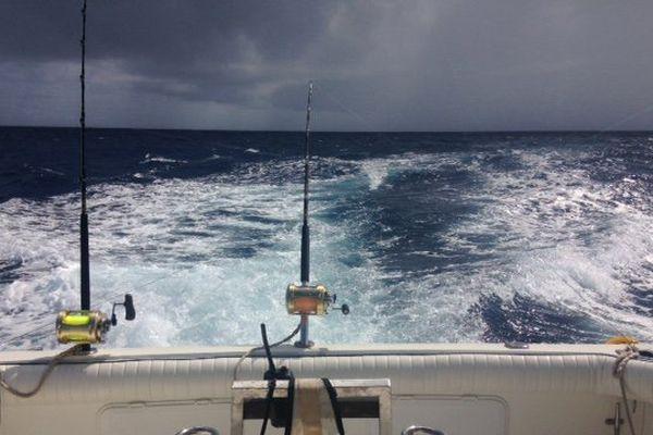 Pêche au Marlin 2