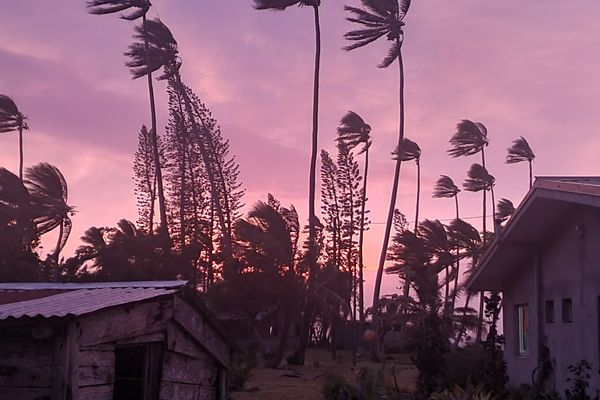 Cyclone Niran à l'île des Pins
