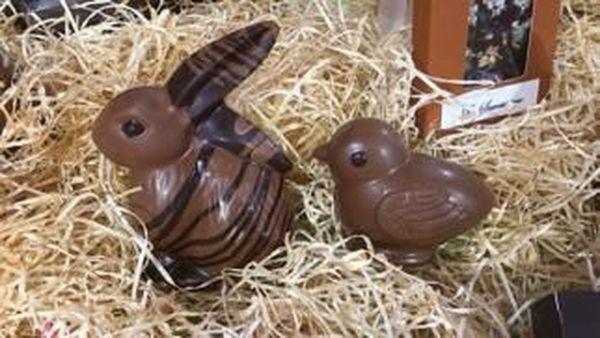Animaux chocolat