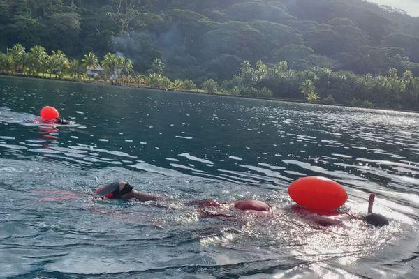 Tour de Tahaa à la nage : lentement, durement mais sûrement