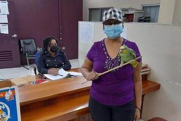 Trinidad et Tobago Jessica et son proprietaire