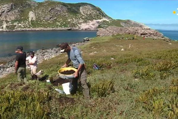 anse a henry fouilles archeologiques 2019